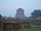 The Sacred Sarnath